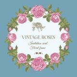 Vectorgroetkaart met een rond bloemenkader van roze rozen Stock Afbeelding