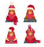 Vectorhaan Hoofdreeks Beeldverhaalstijl, in de winter, Kerstmiskleding Stock Foto