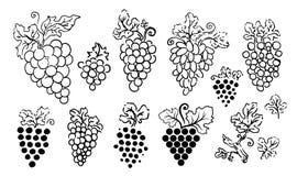 Vectorhand getrokken illustratie van druivensilhouet op witte achtergrond stock illustratie