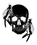 Vectorhand getrokken illustratie van menselijke geïsoleerde schedel en valk royalty-vrije illustratie