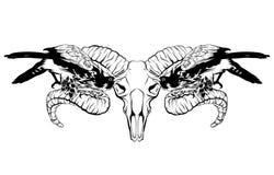 Vectorhand getrokken illustratie van valk en rams geïsoleerde schedel vector illustratie