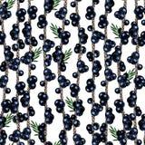 Vectorhand getrokken naadloos patroon van geïsoleerde acaitakken Gegraveerd gekleurd art. Heerlijke tropische vegetarische vrucht royalty-vrije illustratie