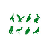 Vectorial collection of birds Stock Photo