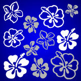 Vectorial flower pattern Stock Photography