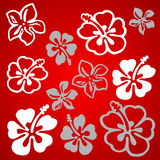Vectorial flower pattern Royalty Free Stock Image