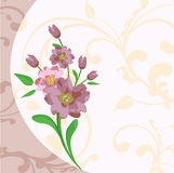 Vectorial flowering Royalty Free Stock Photos