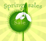 Spring discounts banner Royalty Free Stock Photos