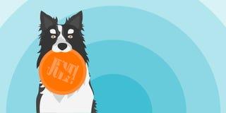 Vectorillustratie die van Hond een Stuk speelgoed houden Border collie met Schijf vector illustratie