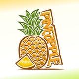 Vectorillustratie op het thema van ananas Stock Foto's