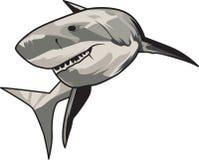 Vectorillustratie: toothy witte haai Royalty-vrije Stock Fotografie