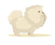 Vectorillustratie van Beeldverhaalhond Geïsoleerde Stock Afbeelding