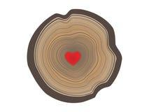 Vectorillustratie van boom jaarringen met hart in het midden in kleur Stock Foto