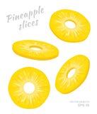 Vectorillustratie van dalende die ananasplakken op witte achtergrond wordt geïsoleerd Een besnoeiing belt van vers exotisch fruit Royalty-vrije Stock Foto's