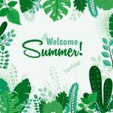 Vectorillustratie van de kaart van de de zomergroet of het bladbanner van de affiche Welkome Zomer Het van letters voorzien zomer royalty-vrije illustratie