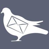 Vectorillustratie van duif op grijze achtergrond Stock Fotografie