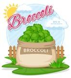 Vectorillustratie van ecoproducten Broccoli in jutezak Volledige zakken met verse groenten Royalty-vrije Stock Afbeeldingen