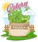 Vectorillustratie van ecoproducten Selderie in jutezak Volledige zakken met verse groenten Royalty-vrije Stock Fotografie