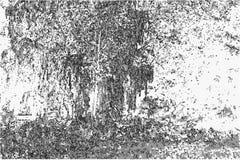 Vectorillustratie van een aardlandschap in zwart-witte ton Royalty-vrije Stock Afbeelding