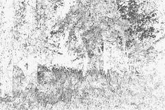 Vectorillustratie van een aardlandschap in zwart-witte ton Royalty-vrije Stock Foto's