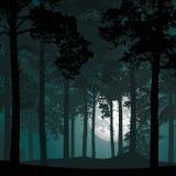 Vectorillustratie van een diep naaldbos onder een nacht sk Royalty-vrije Stock Afbeeldingen