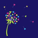 Vectorillustratie van een gestileerde paardebloem in de vorm van harten De bloem symboliseert liefde, vriendschap en goedkeuring royalty-vrije stock fotografie