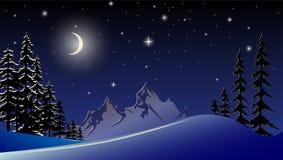 Vectorillustratie van een landschap van de Nieuwjaar` s nacht Stock Afbeeldingen