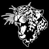 Vectorillustratie van een luipaardhoofd Royalty-vrije Stock Fotografie