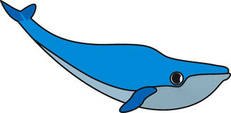 Vectorillustratie van een walvis stock illustratie