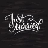 Vectorillustratie van enkel gehuwde teksten met achtergrond en texturen voor huwelijk Met de hand geschreven moderne kalligrafie  Stock Foto