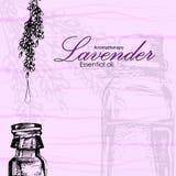Vectorillustratie van etherische olie van lavendel stock afbeelding