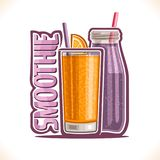 Vectorillustratie van fruit Smoothie stock illustratie