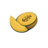 Vectorillustratie van fruitmeloen Royalty-vrije Stock Foto