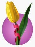 Vectorillustratie van gele tulp Stock Fotografie
