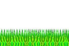 Vectorillustratie van groen gras royalty-vrije illustratie