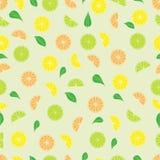 Vectorillustratie van half groene avocado royalty-vrije illustratie