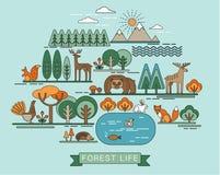 Vectorillustratie van het bosleven Royalty-vrije Stock Fotografie