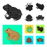 Vectorillustratie van het wild en moerasembleem Reeks van het wild en reptielvoorraad vectorillustratie vector illustratie