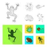 Vectorillustratie van het wild en moeraspictogram Inzameling van het wild en reptielvoorraad vectorillustratie royalty-vrije illustratie