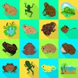Vectorillustratie van het wild en moerasteken Reeks van het wild en reptielvoorraad vectorillustratie royalty-vrije illustratie