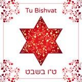 Vectorillustratie van Joodse vakantie David Star met granaatappelvruchten, takken voor groetkaart of affiche Tekst Turkije Bishva Stock Fotografie