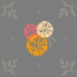 Vectorillustratie van kleuren oranje plakken met bladeren Royalty-vrije Stock Afbeeldingen