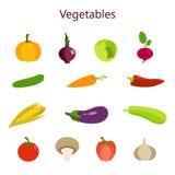 Vectorillustratie van kleurenreeks groenten Royalty-vrije Stock Foto