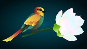 Vectorillustratie van kleurrijke vogel stock illustratie