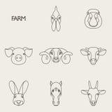 Vectorillustratie van landbouwbedrijfdieren met steekproeftekst Stock Foto's