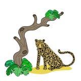 Vectorillustratie van luipaard royalty-vrije illustratie