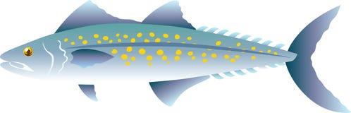 Vectorillustratie van makreel de Oceaanvissen Stock Fotografie