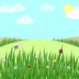 Vectorillustratie van mooi gebiedslandschap met een dageraad, groene heuvels, heldere kleuren blauwe hemel, achtergrond in vlakte vector illustratie