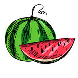 Vectorillustratie van rijpe watermeloen Royalty-vrije Stock Foto's