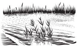 Vectorillustratie van rivierlandschap met cattail en bomen Royalty-vrije Stock Foto's