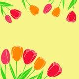 Vectorillustratie van rode gele die tulpen als prentbriefkaar in m worden gebruikt royalty-vrije illustratie